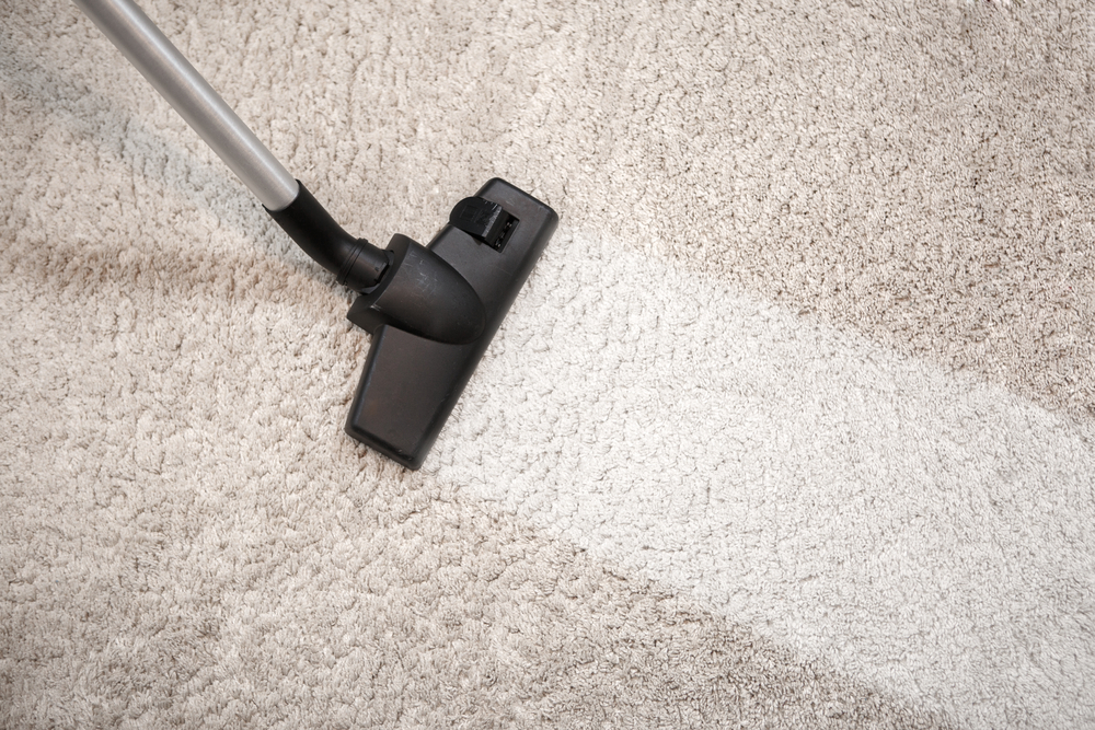 Cleaning business tips – The best hoovering practice